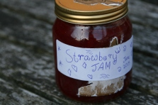 homemade, plastic free jam