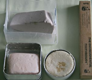 Zero Waste toiletries: Lush shampoo and conditioner bars; compostable toothbrush
