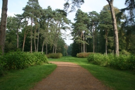 Westonbirt Arboretum and Shinrin Yoku