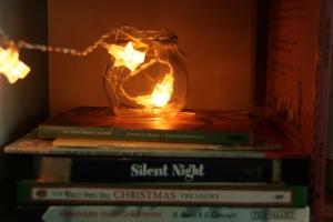 A Christmas Bookshelf