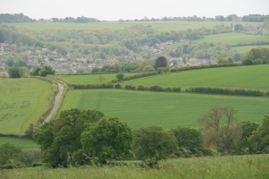 Wiltshire view in May