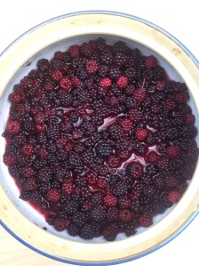 making blackberry cordial