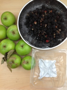 apples, blackberries and discarded plastic packaging for free via secondhandtales.wordpress,com